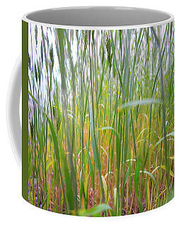 Coffee Mug featuring the photograph Tall Grass In Herat by SR Green