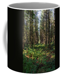 Coffee Mug featuring the photograph Tall Trees In Sherwood Forest by Scott Lyons
