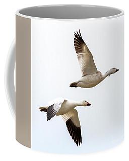 Tandem Flight Coffee Mug