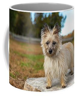 Tasha Coffee Mug