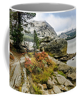 Tenaya View Coffee Mug