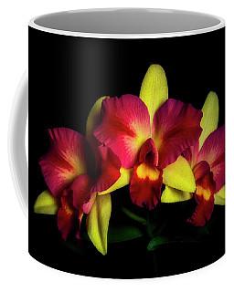 Teqiuila Sunrise Coffee Mug