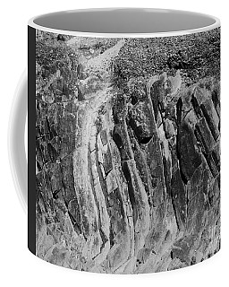 Coffee Mug featuring the photograph Textures  by Jeni Gray