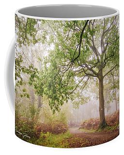The Autumn Path Coffee Mug