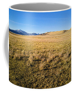 The Beautiful Valley Coffee Mug