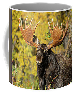Coffee Mug featuring the photograph The Best One by Mary Hone