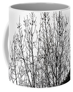 Coffee Mug featuring the photograph The Birds by Kate Brown