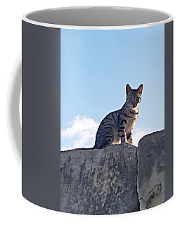 The Cat Coffee Mug