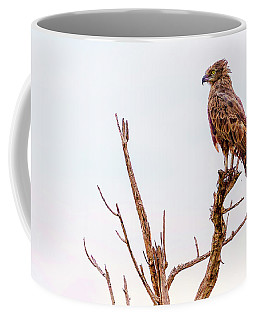 Coffee Mug featuring the photograph The Crowned Eagle by Kay Brewer