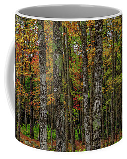 The Fall Woods Coffee Mug