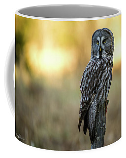 The Great Gray Owl In The Morning Coffee Mug