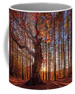 The King Of The Trees Coffee Mug