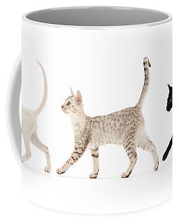 The Kits Parade - Three Coffee Mug