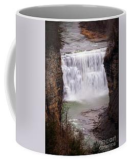 The Middle Falls Coffee Mug