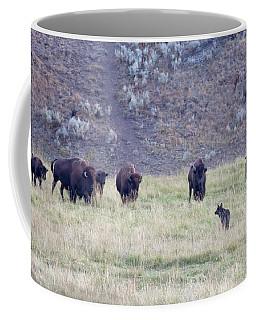 The Naming Of Spitfire Coffee Mug