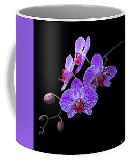 The Orchids Coffee Mug