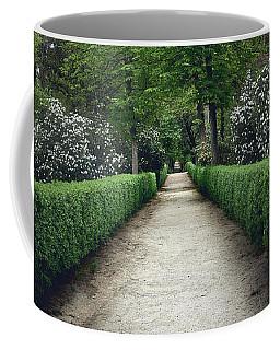 The Paths Of The Retiro Park Coffee Mug