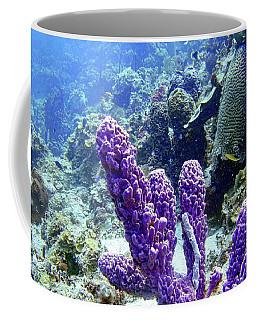 The Purple Sponge Coffee Mug