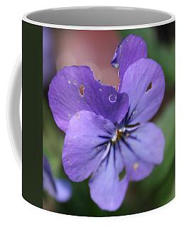 The Raggedy Viola Coffee Mug