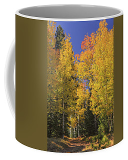 The Road A Little Less Traveled Coffee Mug