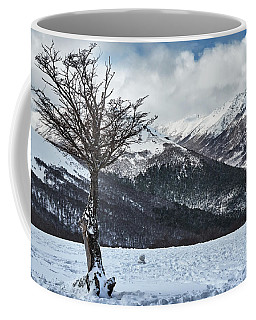Dry Try On Frozen Mountainous Landscape In The Argentine Patagonia Coffee Mug
