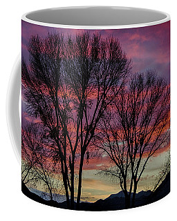 Coffee Mug featuring the photograph The Trees Know Sunset by Gaelyn Olmsted