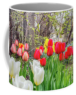 The Tulips Are Out. Coffee Mug