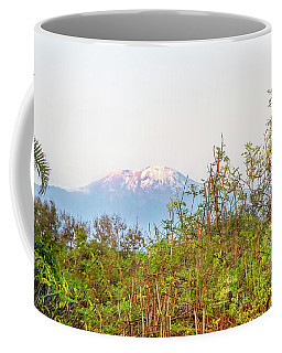 Coffee Mug featuring the photograph The Venerable Mt Kilimanjaro by Kay Brewer