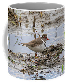 Three-banded Plover Coffee Mug