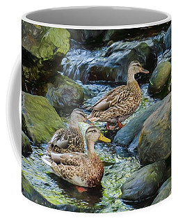 Three Ducks Swimming In A Stoney Brook. Coffee Mug