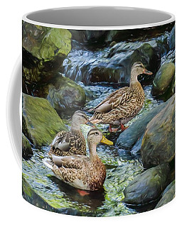 Three Ducks Swimming In A Stoney Brook. Coffee Mug