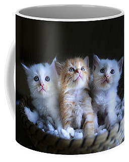 Three Little Kitties Coffee Mug