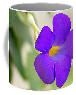 Thunbergia Erecta Bush Clock Vine Coffee Mug