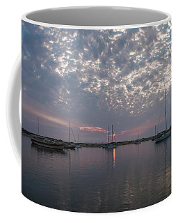 Coffee Mug featuring the photograph Tidelands Park Vista by Mike Long
