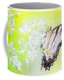 Tiger Swallowtail Butterfly On Privet Flowers Coffee Mug