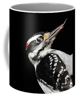 Coffee Mug featuring the photograph Tongue Of Woodpecker by Debbie Stahre