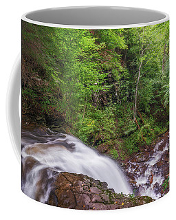 Coffee Mug featuring the photograph Top Of The Falls by Sharon Seaward