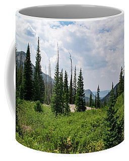 Coffee Mug featuring the photograph Trail To Gilpin Lake by Nicole Lloyd
