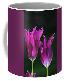 Translucent Tulips Coffee Mug