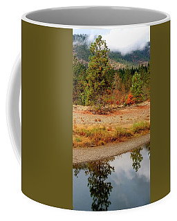 Coffee Mug featuring the photograph Tree In Illinois River by Jerry Sodorff