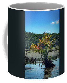 Coffee Mug featuring the photograph Tree In Mallows Bay by Lora J Wilson