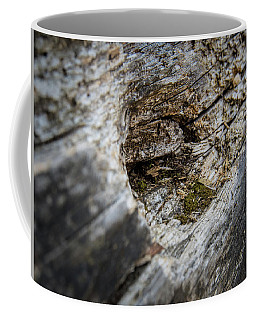 Tree Wood Coffee Mug