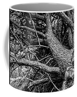Trees, Leaning Coffee Mug