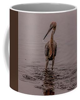 Tri Colored Heron Coffee Mug