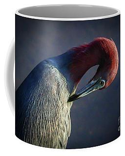 Tricolor Preening Coffee Mug