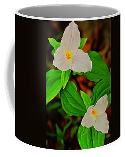 Trilliums Coffee Mug