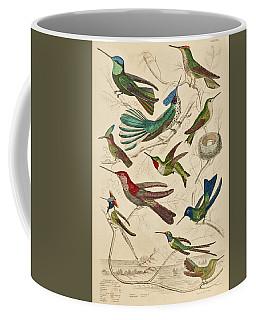 Trochilus - Hummingbirds Coffee Mug