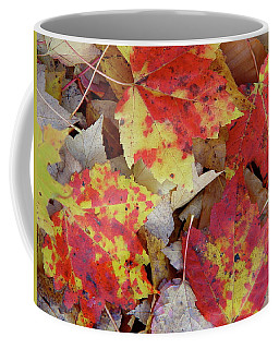 True Autumn Colors Coffee Mug