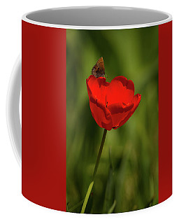 Tulip And Skipper Coffee Mug