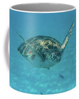 Turtle Approaching Coffee Mug